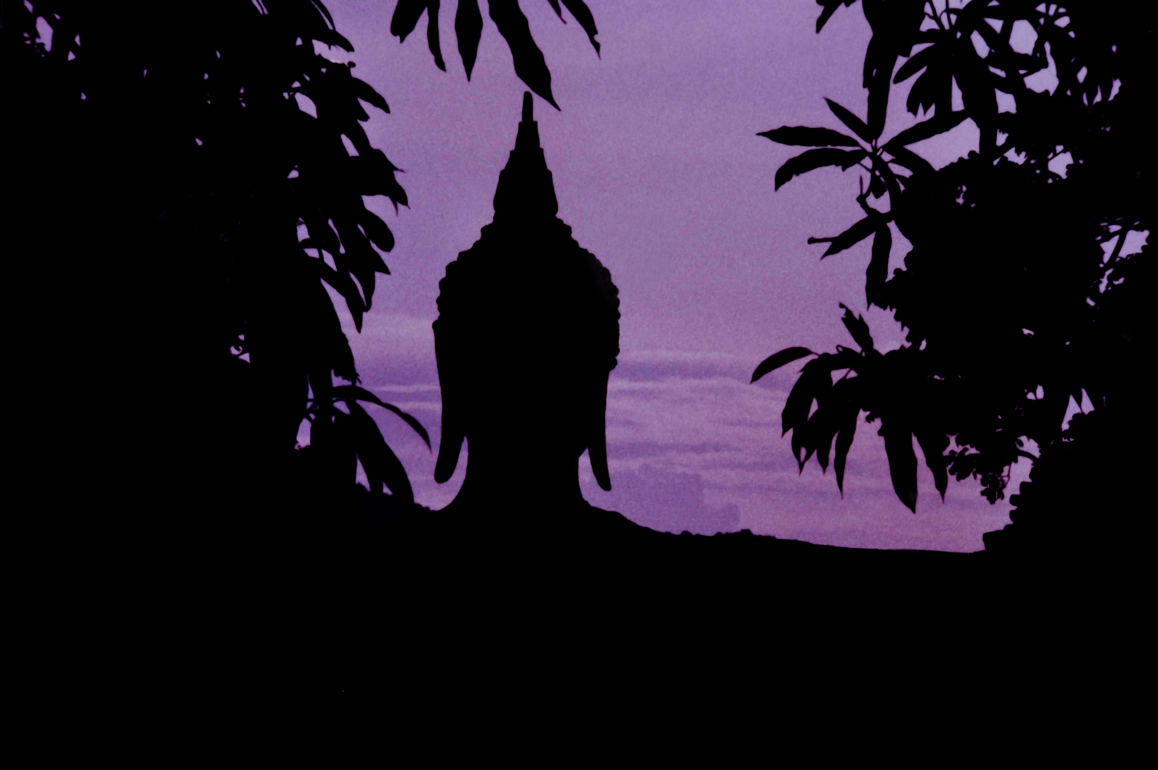 The Emptiness of Buddha