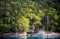 Cypress Trees and Turquoise Sea