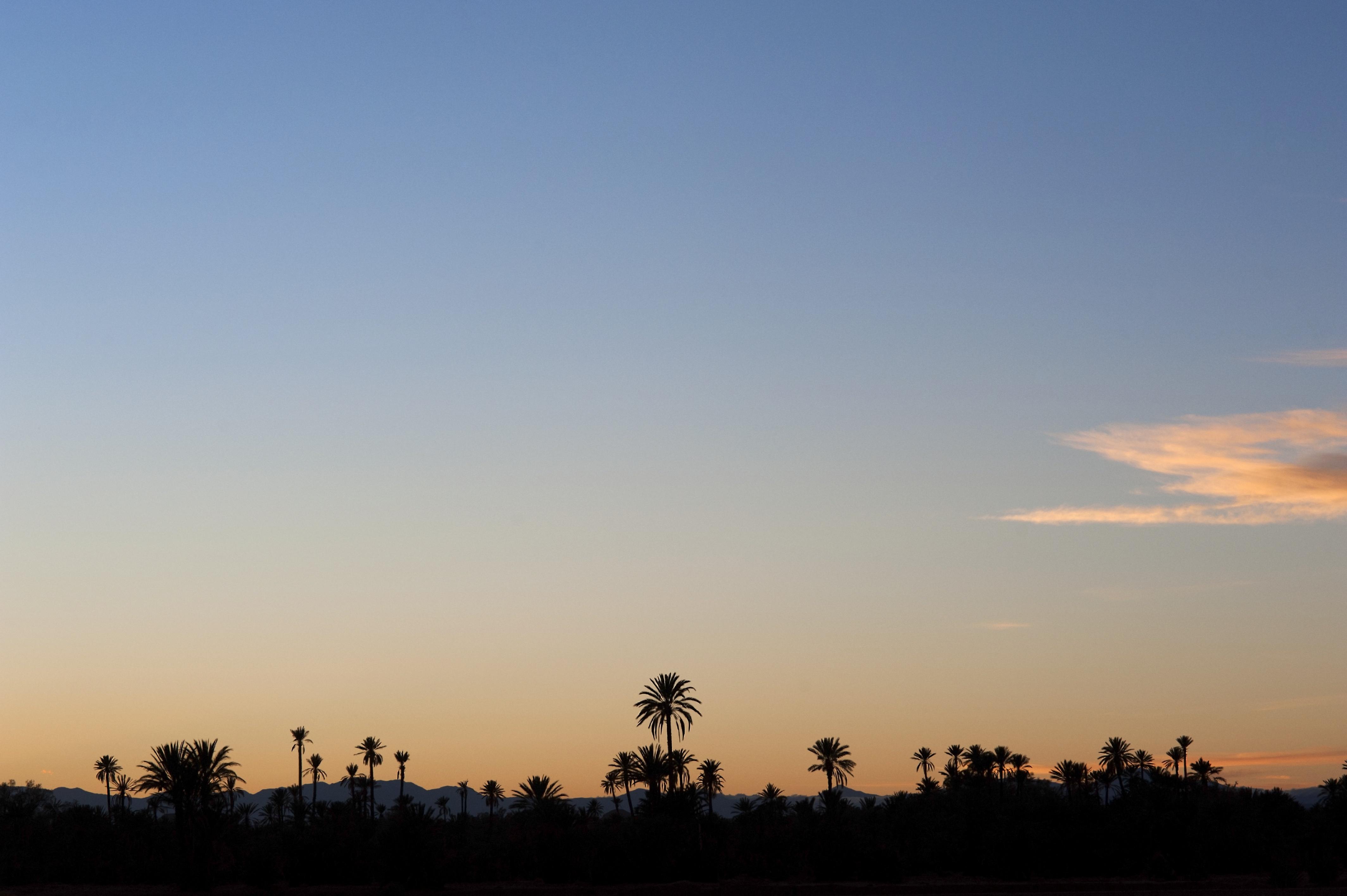 Skoura sunset & silhouettes