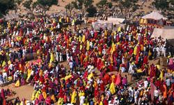 Pushkar Fair  Final