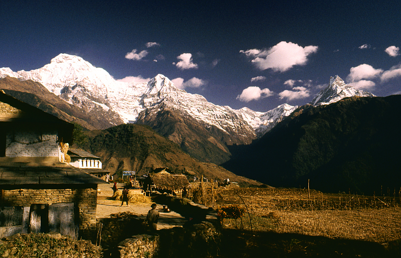 Annapurna and the Fishtail