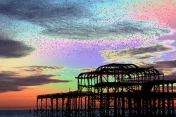 Psychedelic Starling Sky
