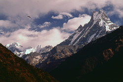 Fishtail peak Nepal Final copy