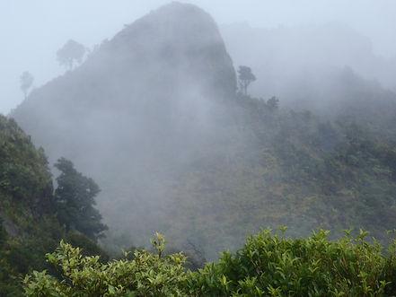 Through the mist 2.jpg