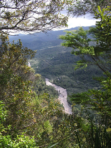 Kauaeranga River Valley.jpg
