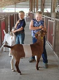 Sydney & Jackson showing goats