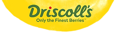 Driscoll's_Logo.png