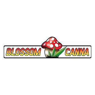 blos1.jpg