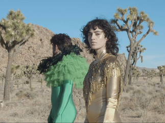 Peacock & Psychadelia Music Video 4.png