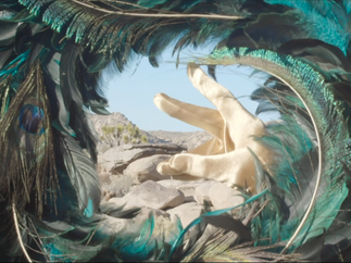 Peacock & Psychadelia Music Video 10.png