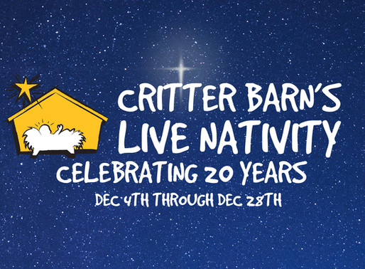 The History of The Live Nativity