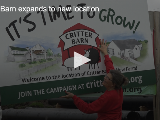 'We're moving': Critter Barn to expand programming at new location- WZZM 13