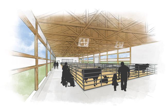 Dairy-Interior-Pens-CLR_v2.jpg.jpg