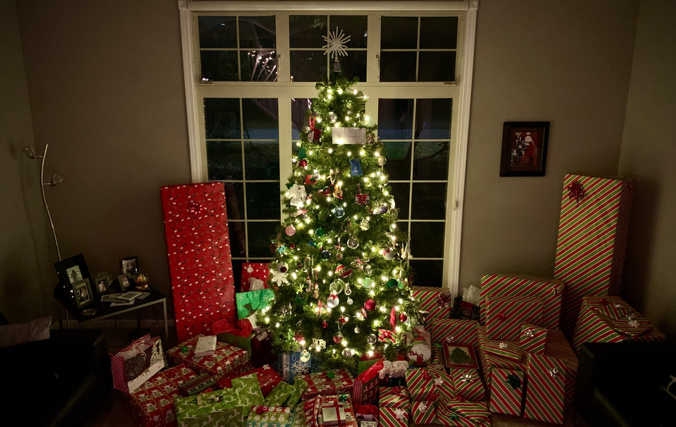 Front Living Room and tree