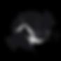 DOCCFF Logo.png