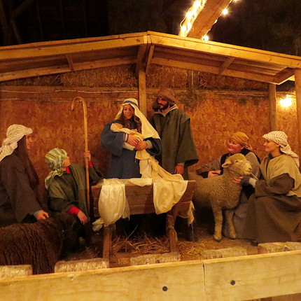 Improved Photo for Live Nativity_edited.jpg