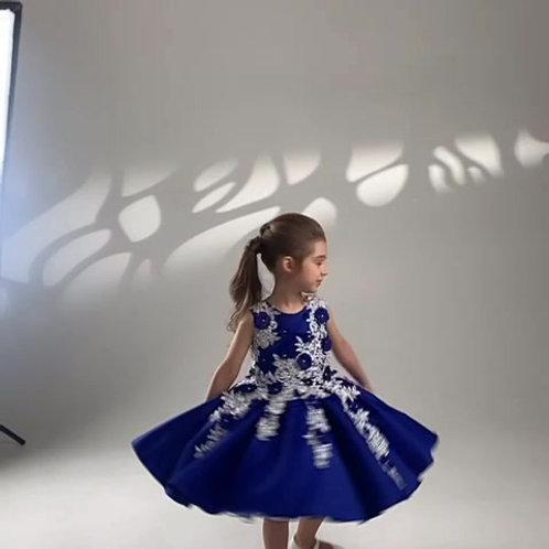 Nicole Tutu Dress