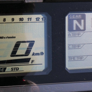 P1000559 (2).JPG