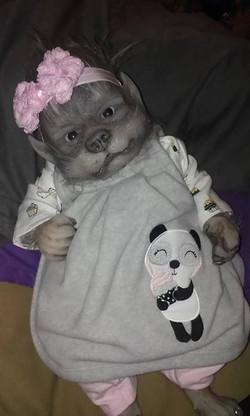 Panda girl!