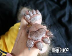 Buckshot feet