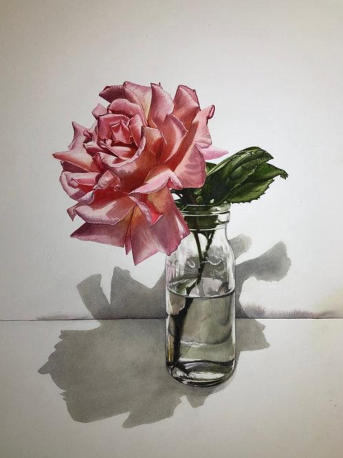 Single Rose in Glass Bottle