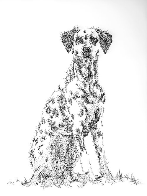 Pet and dog portrait artist in pin and threads by Debbie Smyth
