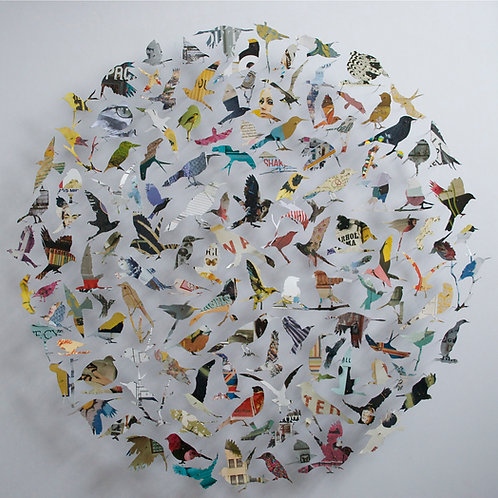 Paper and pin bird contemporary art collage by Rebecca Coles