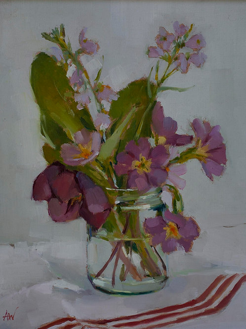 Primulas and Cuckoo flower