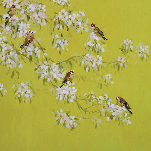 Pretty floral affordable art painting by Fletcher Prentice of Spring Goldfinches on Japanese Cherry blossom