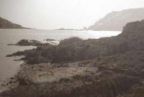 Salcombe Estuary Light 80x120cm.JPG