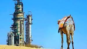 Energia- Impegno comune per Washington e Riyadh e G20 di successo in Italia