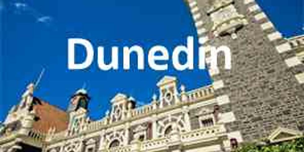 Asset Valuation and Depreciation - Dunedin