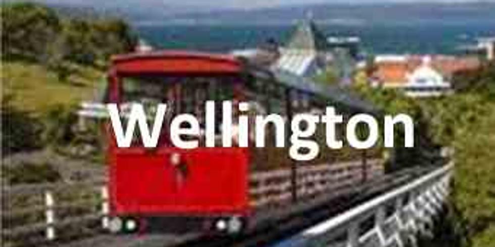 Asset Valuation and Depreciation - Wellington