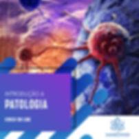 patologia-FEED-online.jpg