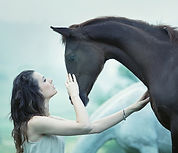 Simple bonds and energy healing, equine therapy between horse and human.