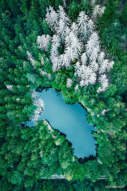 -- Arcibiskupský lom, Rychlebské hory --   Škvíra mezi světy za jesenickým průsmykem. Před válkou skulina pro sudetské rodiny, dnes místo pro přiváté rychlebské pábitele. A kolem kapky opuštěných lomů v horách, u kterých možná někdy umírají stromy, jindy ožívají poutíci z měst, ztracení ve světě nebo v sobě.