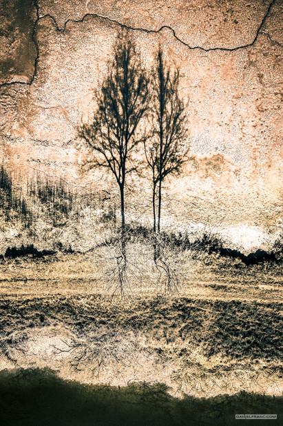 - bezejmenný rybník u Novořeckých močálů, Jižní Čechy -