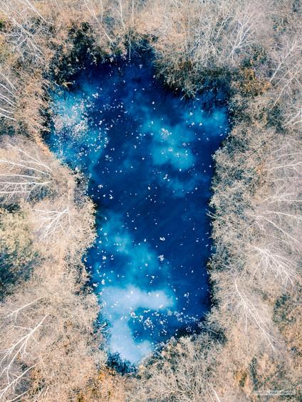-- čistička u Olešníku u Českých Budějovic --  Miluju odpadní vody. Schovávají se v nich tajné vesmíry, protože jim je jasné, že tam je nikdo hledat nebude. K této galaxii nevede žádná cesta a tuším, že kus od ní je i nepřelezitelný plot a na něm i nějaké moc výhružné cedule. Nic z toho nevidíte, když máte hlavu v oblacích a střelka kompasu vám ukazuje směrem k.... možná dobře maskovaným planetám.  Odpad?  Portál do dávno zmizelého světa kousek odvedle.