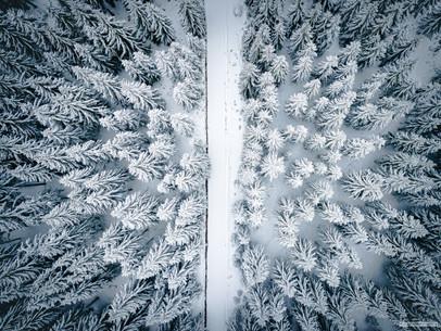 - Schuppenberská cesta, Krušné hory -   Tento vý-let podél krušnohorské běžecké magistrály byl jeden z Nejkrušnějších. Krušný vichr, krušná zima, krušné technické podmínky. Jak to tedy, že to nakonec celé dopadlo tak mírumilovně?