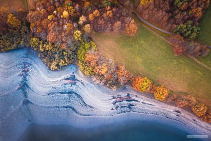 -- Třeboň, rybník Svět --   Světské podzimy jsou mimo tento svět. Objeví se kresby, které čekají na ty správné palety a na to, až rybáři upustí vody.   Dalo by se podél pobřeží lítat pořád. Už chápu, proč tam bylo tolik ptáků.