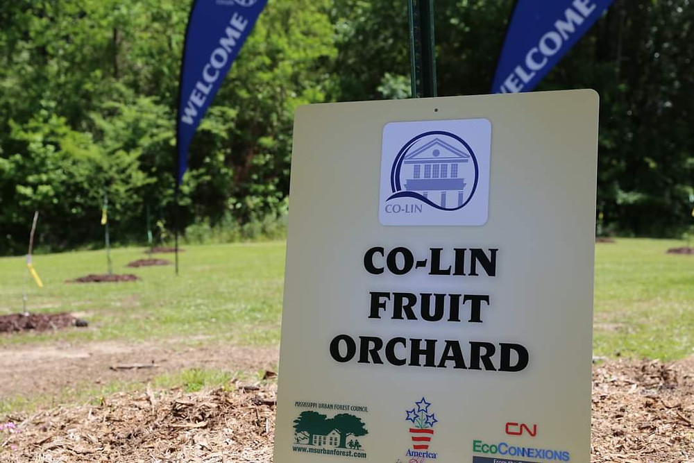 CO-Lin Orchard