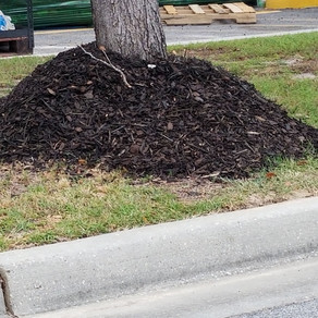Nothing good comes from mulch volcanoes
