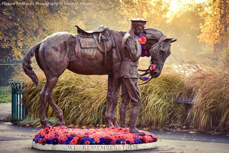 Romsey War Horse and Trooper