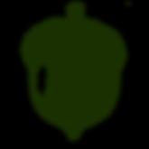 Acorn_4x5_72.png