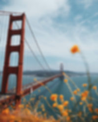 red-suspension-bridge-3493772.jpg