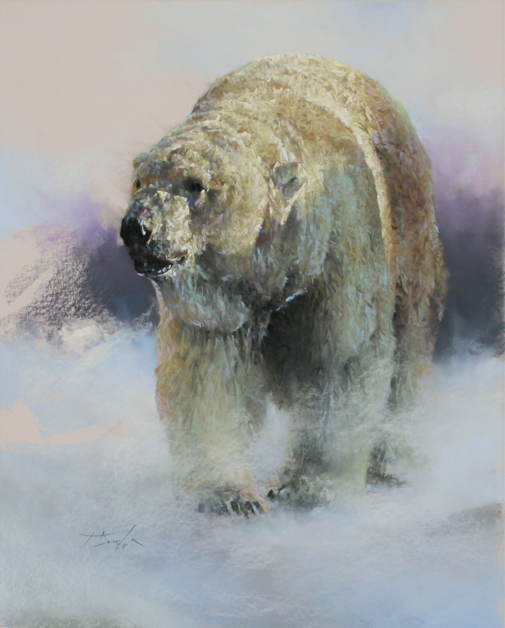 Polar Bear Untitled