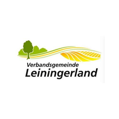 VG Leiningerland