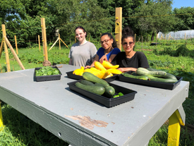 Summer Jobs at the Garden