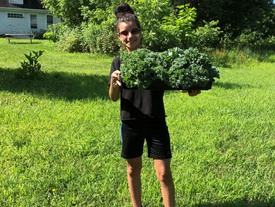 Harvest is Bountiful