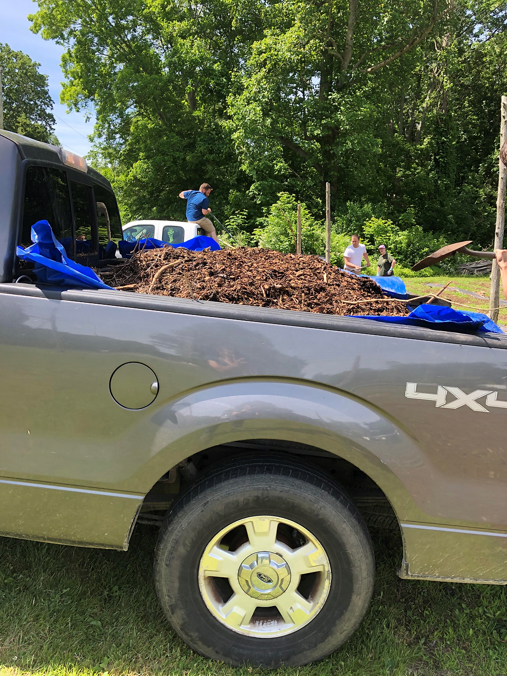 Thank you to Craig Floyd of the DPNC Coogan Farm Giving Garden for taking the time to load eight truckloads of wood chips for the Jason Brear of the ARC of SE CT Garden in Ledyard!